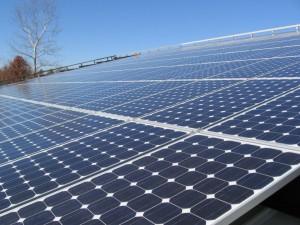 NC Zoo solar array
